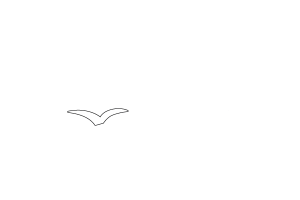 Madebus